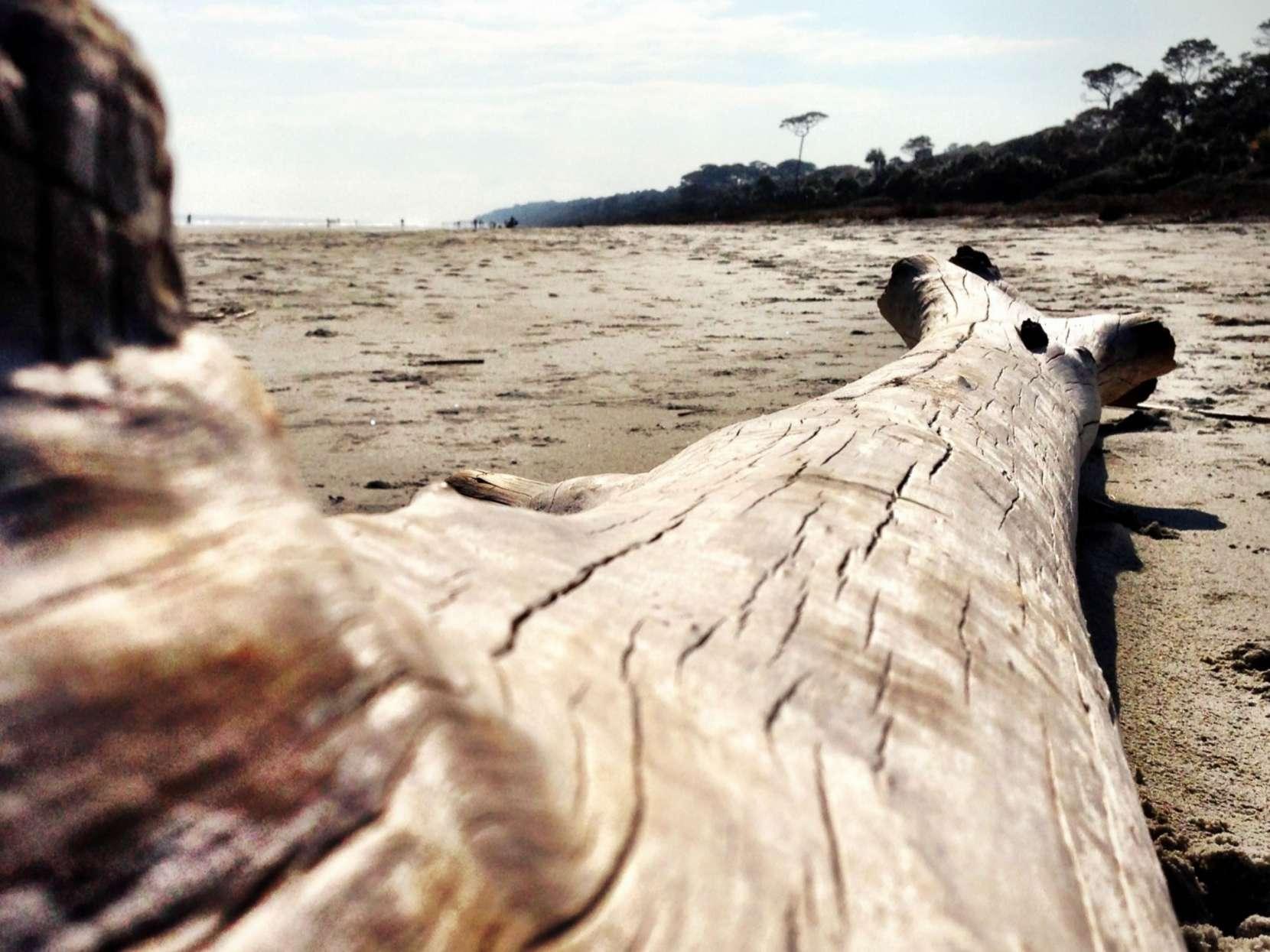 Sea-Pines-Beach-Hilton-Head-Island.jpg